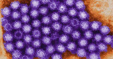 Virus da Mielite flácida aguda