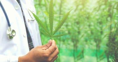 Cannabis pode ajudar pacientes com doença pulmonar obstrutiva crônica
