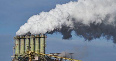 Exposição à poluição do ar pode prejudicar a função cognitiva